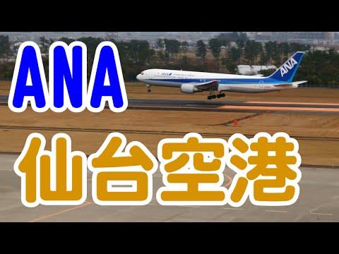 [仙台空港撮影] 全日空(ANA)着陸 [OLYMPUS XZ-2]
