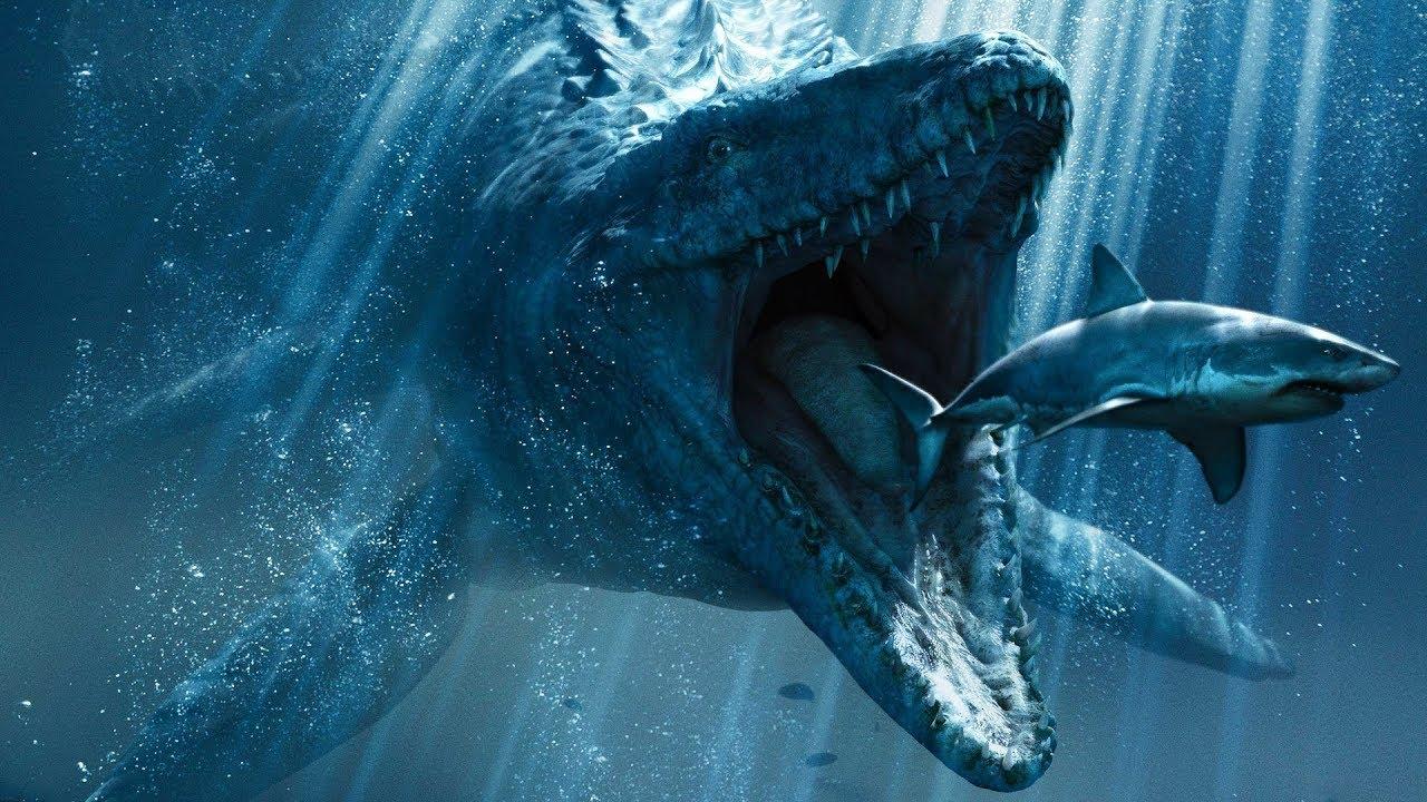 مخلوقات بحرية منقرضة أضخم من الحوت الأزرق