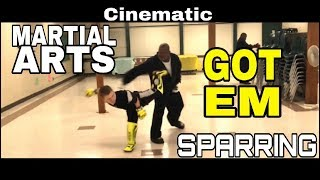 Martial Arts Cinematic Sparring *comedy*