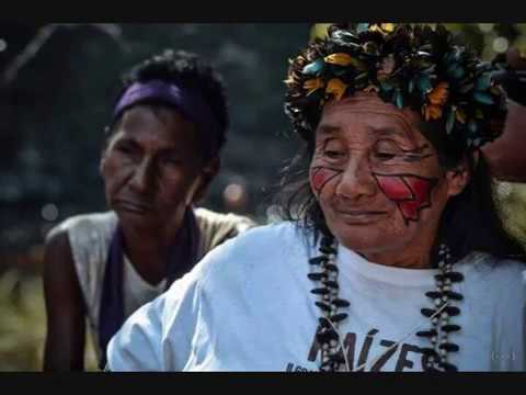 Supporting the Indigenous People of the Brazilian  Amazon