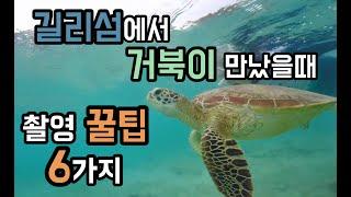 [Vlog#16] Bali vlog_길리섬에서 거북이랑…