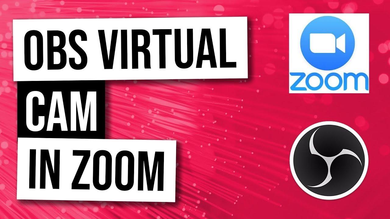 online treffen freunde zoom single frauen mit katze