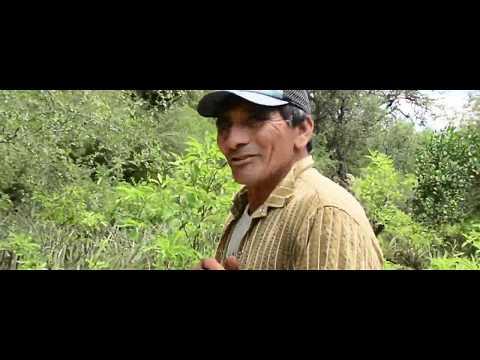 Fabio Cuéllar - Santiago del Estero - Argentina
