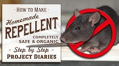 ★ How to: Make Homemade Repellent Spray (Good for Rats, Mice, Squirrels, Bugs, Cats, Deer & Insects)