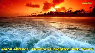 Скачать Aaron Ahrends Newborn Forgotten Birds Remix