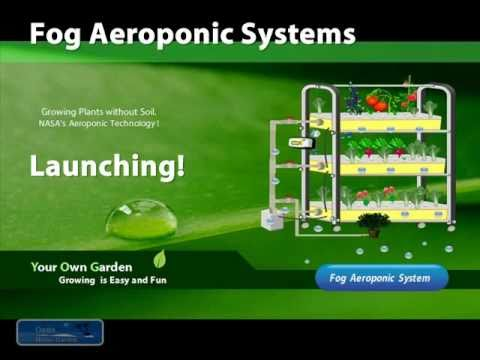 Fog Aeroponic Systems 植物工場 Youtube