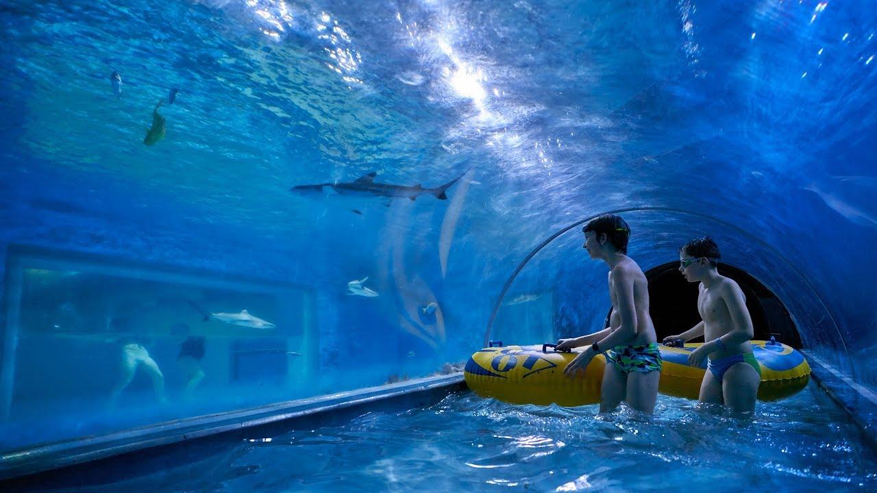 Insane Shark Water Slide At Aquapark Reda Youtube