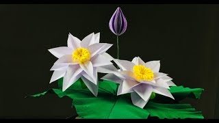 Paper Crafts For School | Paper Lotus Flower Making Easy | Lotus Flower Paper Craft