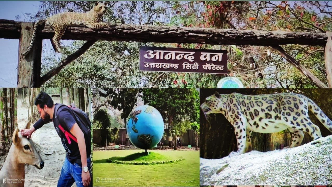 Download Anand Van//New City Park//Uttarakhand City Forest//Dehradun