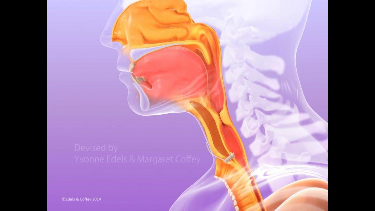 laryngectomy surgical voice restoration imperial college