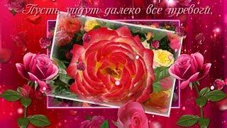 Я с утра подарю тебе розы...