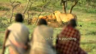 Libaax Vs Masaya