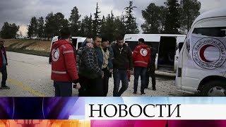 Еще девять сирийских граждан удалось вызволить из бандитского плена в Арабской Республике.