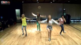 Falling In Love Dance Practice - 2NE1