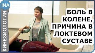 Боль в колене. Причина боли в локтевом суставе. Кинезиология. Людмила Васильева