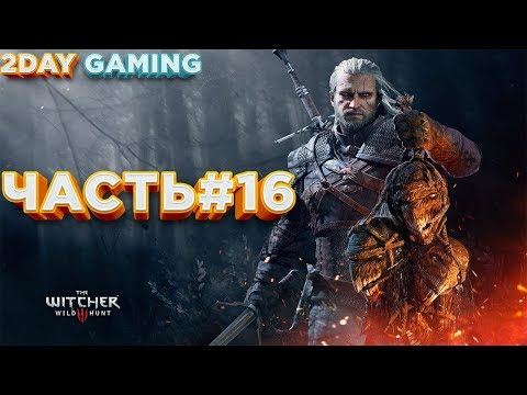 Wild Hunt - The Witcher 3 (2DAY Gaming) ЧАСТЬ#16