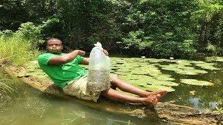 liberando mas de 15000 peces guppy en un lago