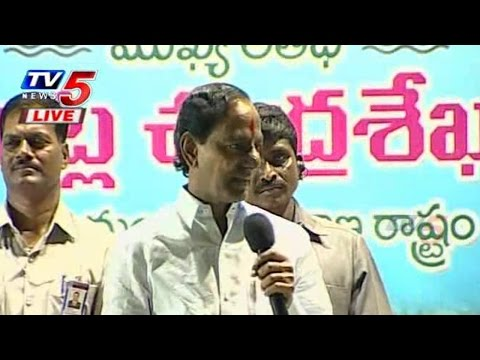 """"""" There is no Life for Anti-T Media """"  