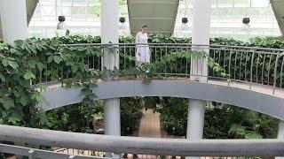 Незаконная съемка. Выбираем место для свадебной фотосессии. 23.06.16 | LIVE VLOG | INESA&ALEX-VLOG