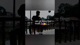 Meye Tui Amare Mittha Shikhali 💔