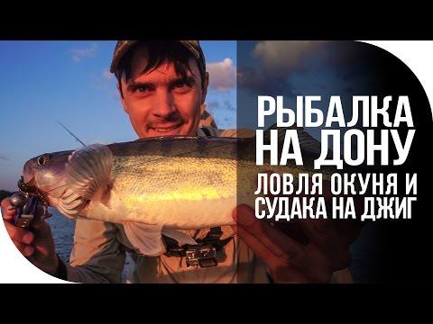 Рыбалка на Дону. Ловля окуня и судака на джиг спиннинг