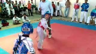 cutest fight ever small taekwondo champs fighting very hard