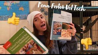 Penn Foster College Vet Tech Program Honest Review