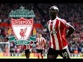 Sadio Mane ● Welcome To Liverpool ● Skills - Assists - Goals ●