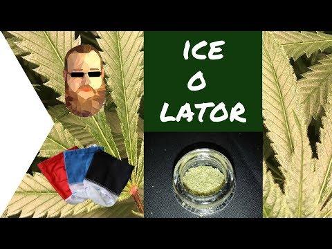 Cannabis Ice-O-Lator mit MrFumuFumu herstellen /Doku