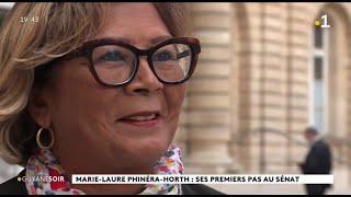 Marie-Laure Phinéra-Horth élue Sénatrice Le 27 Septembre Découvre Le Sénat