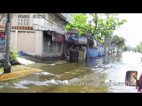 Flood Report - 13 November 2011
