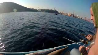 Bursa palamut avı