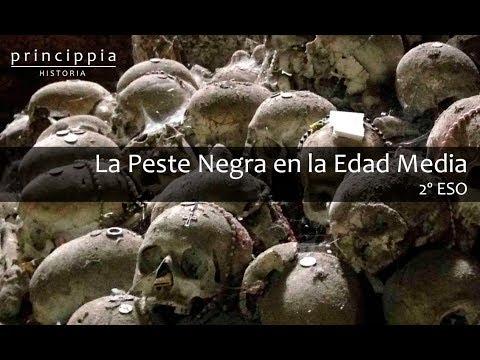 La Edad Media y la peste negra (Historia para alumnos de secundaria)