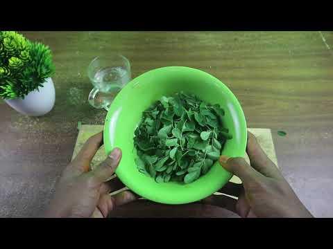 cara-membuat-obat-herbal-penyakit-mata-dari-kelor