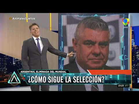 Fuerte editorial de Fantino en Animales Sueltos tras la eliminación de Argentina