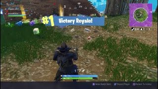Fortnite buggy down victory