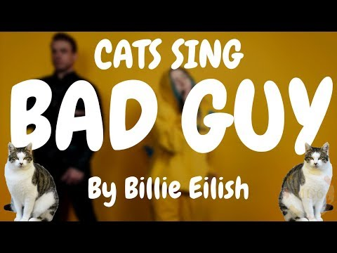 Cats Sing Bad Guy by Billie Eilish | Cats Singing Song