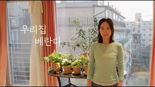 (SUB) 우리집 베란다 Veranda of our h…