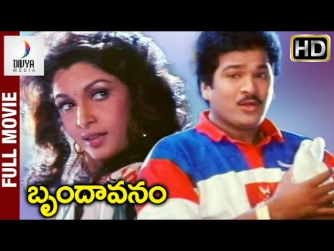 Brindavanam Telugu Full Movie HD |...