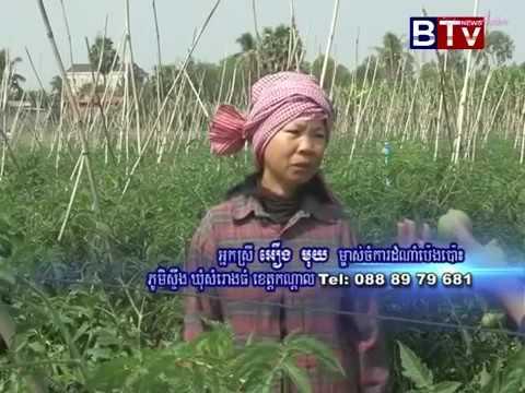BTV Agriculture  News