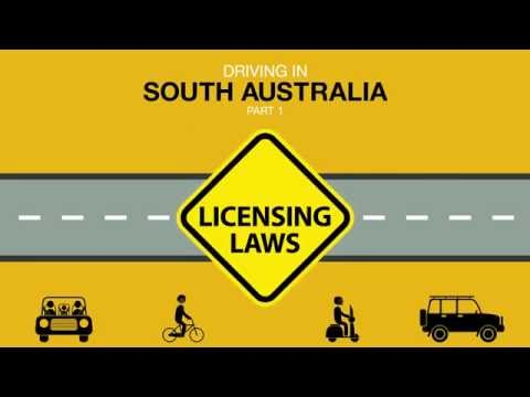 Driving In South Australia PART 01 Licensing Laws