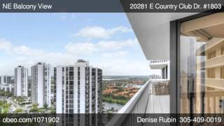 20281 E Country Club Dr 1803 Aventura FL 33180 - Denise Rubin