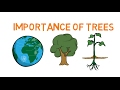 Importance Of Trees - Facts About Trees For Kids - Why Do We Need Trees - Simply E-learn Kids