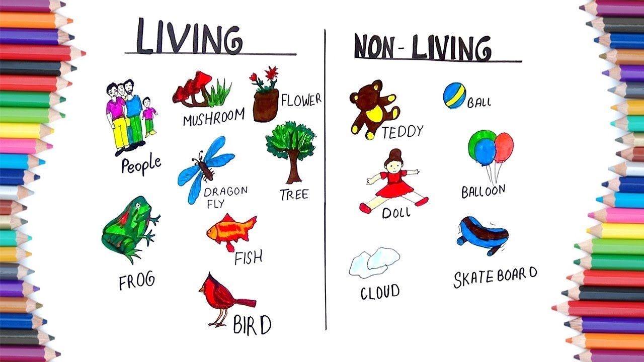 How To Draw Living And Non Living For Kids Youtube