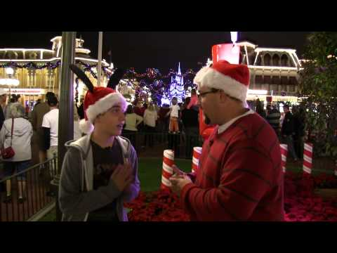 Attractions - The Show - Nov. 29, 2012 - Mickey's Christmas Party, SeaWorld Christmas and much more