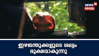 News18 Kerala Live: വെള്ളമിറങ്ങിയിട്ടും ദുരിതം നീങ്ങുന്നില്ല ; ഇഴജന്തുക്കളുടെ ശല്യം രൂക്ഷമാകുന്നു