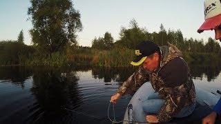 Заехали порыбачить на обычный деревенский пруд, а там...