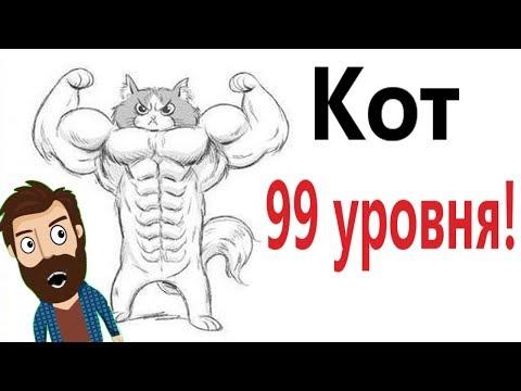Лютые приколы. МОЙ КОТ 99 УРОВЕНЬ!!! Засмеялся проиграл! САМОЕ смешное видео! – Domi Show