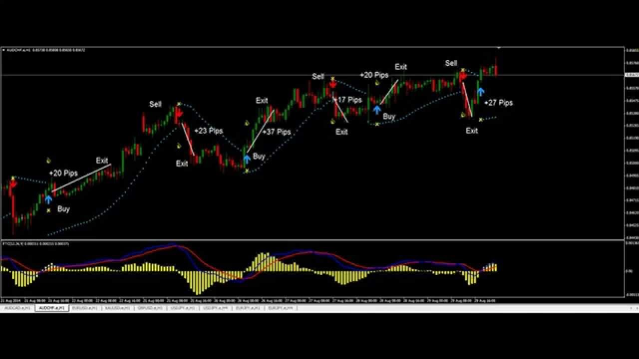 Forex trend software