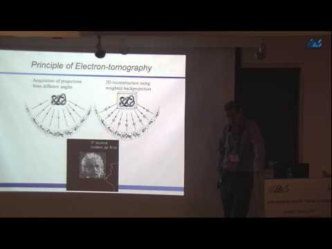 Ohad Medalia (University of Zürich) Basic principle in three-dimensional electron microscopy